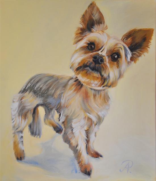 Portrait_Hund